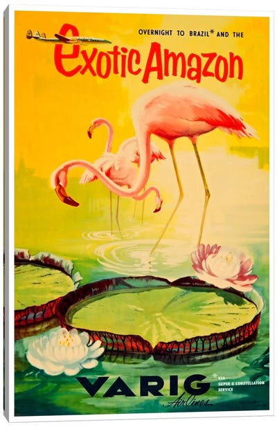 Exotic Amazon - Varig Airlines Canvas Art Print