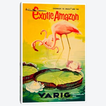 Exotic Amazon - Varig Airlines Canvas Print #LIV87} Canvas Art Print