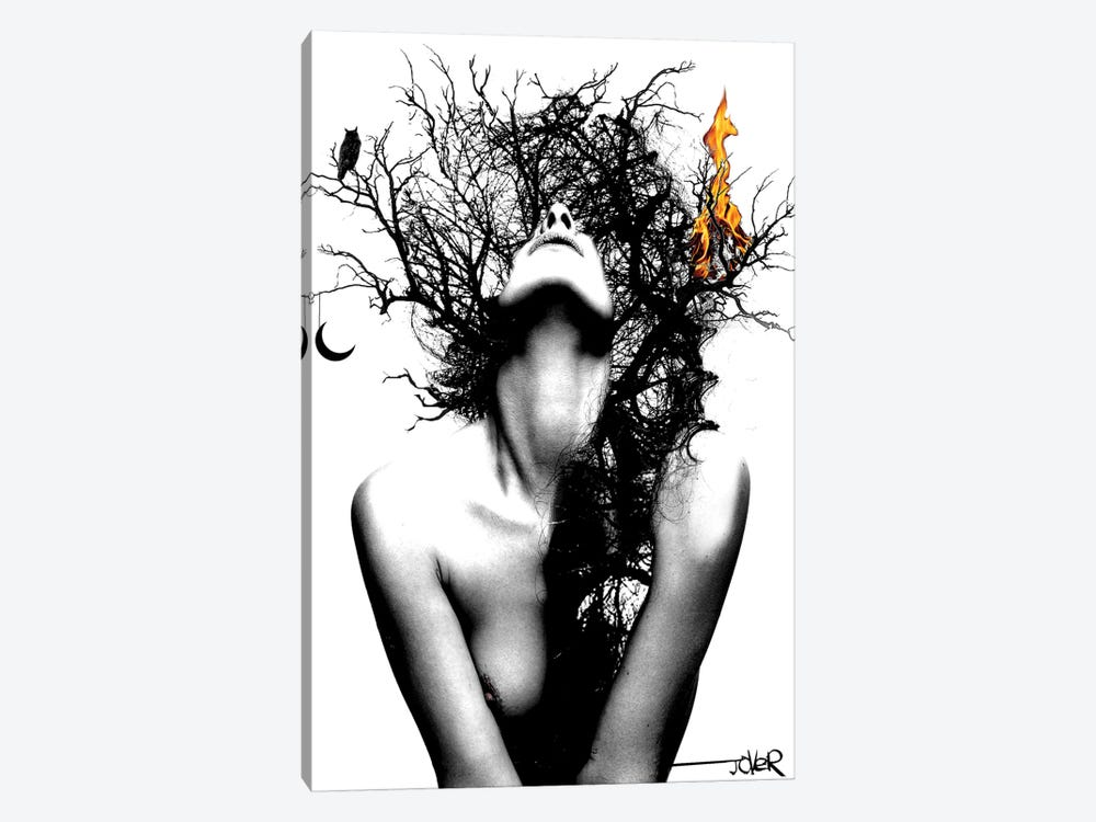 Wisdom And Fire by Loui Jover 1-piece Canvas Art Print