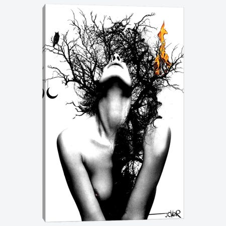 Wisdom And Fire Canvas Print #LJR187} by Loui Jover Canvas Art Print