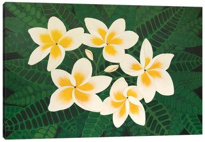 Frangipani Dreams Canvas Art Print