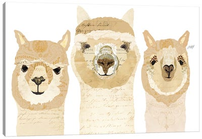 Alpacas Collage Canvas Art Print