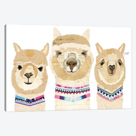 Alpacas Collage (Colorful Palette) Canvas Print #LKC113} by LindseyKayCo Canvas Print