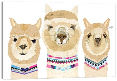 Alpacas Collage (Colorful Palette) Canvas Art Print