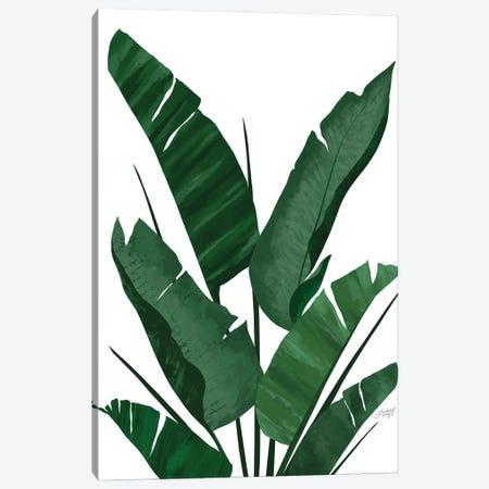 Banana Leaf Plant Collage I Canvas Print #LKC123} by LindseyKayCo Canvas Art