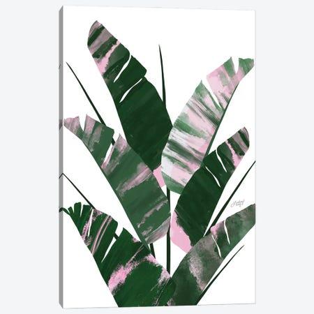 Banana Leaf Plant Collage II Canvas Print #LKC124} by LindseyKayCo Canvas Print