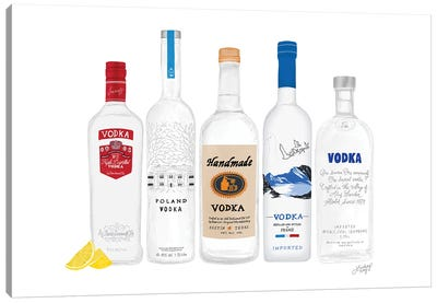 Vodka Bottles Illustration Canvas Art Print