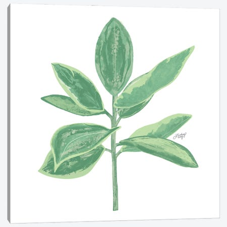 Green Plant Canvas Print #LKC143} by LindseyKayCo Canvas Artwork