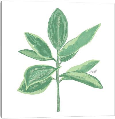 Green Plant Canvas Art Print