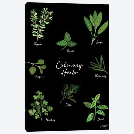 Culinary Herbs Black Canvas Print #LKC14} by LindseyKayCo Canvas Wall Art