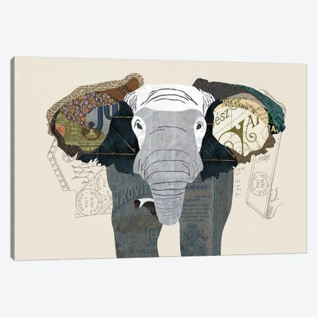 Elephant Collage 3-Piece Canvas #LKC25} by LindseyKayCo Canvas Print