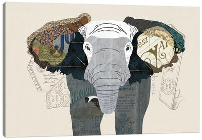 Elephant Collage Canvas Art Print