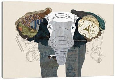 Elephant Collage Canvas Art Print