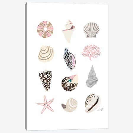 Seashell Collage Canvas Print #LKC71} by LindseyKayCo Art Print