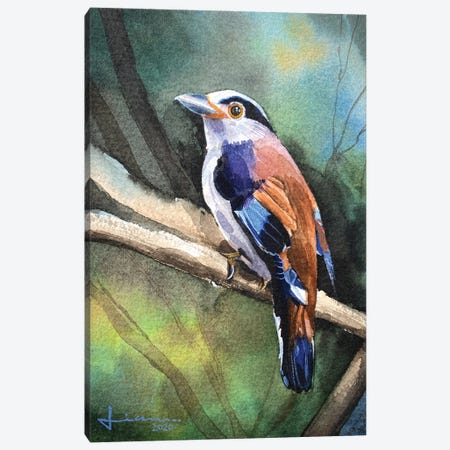 Perched Bird II Canvas Print #LKM11} by Liam Kumawat Art Print