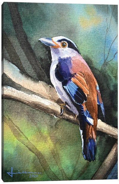 Perched Bird II Canvas Art Print