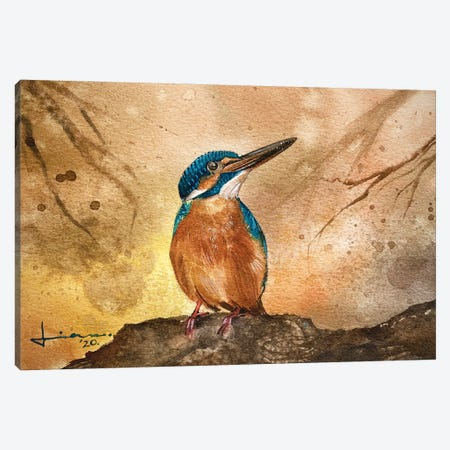 Kingfisher II Canvas Print #LKM32} by Liam Kumawat Canvas Art Print