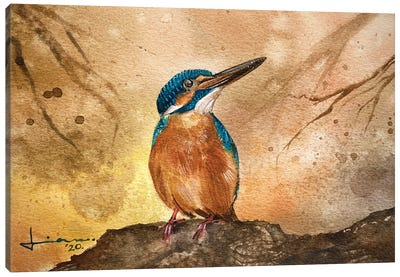 Kingfisher II Canvas Art Print