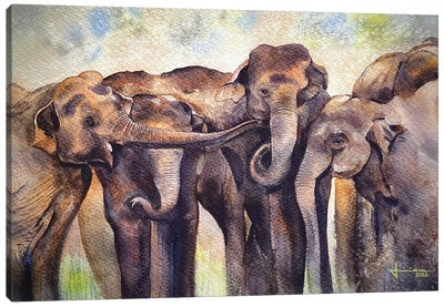 Gathering Canvas Art Print