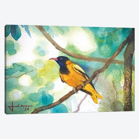 Perched Bird III Canvas Print #LKM40} by Liam Kumawat Canvas Wall Art