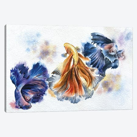 Beta Fish Canvas Print #LKM42} by Liam Kumawat Canvas Art