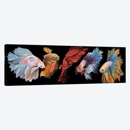Beta Fish In Black Canvas Print #LKM46} by Liam Kumawat Art Print