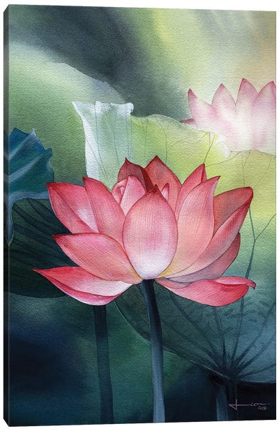 Water Lily I Canvas Art Print