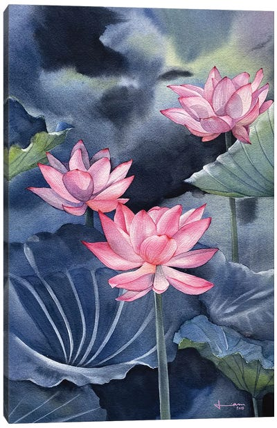 Water Lily III Canvas Art Print
