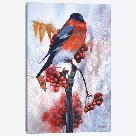 Robin Canvas Print #LKM60} by Liam Kumawat Canvas Art
