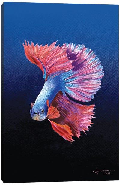 Siamese Canvas Art Print
