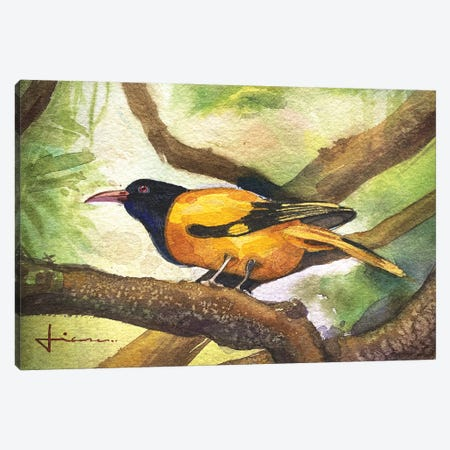 Perched Bird Canvas Print #LKM7} by Liam Kumawat Canvas Wall Art