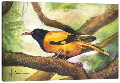 Perched Bird Canvas Art Print