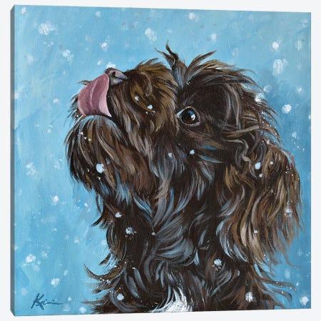 Havanese Catching Snowflakes Canvas Print #LKV11} by Lindsay Kivi Canvas Artwork