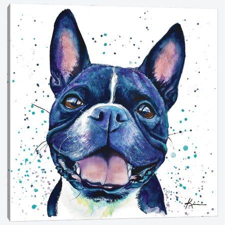 Boston Terrier II Canvas Print #LKV20} by Lindsay Kivi Canvas Print