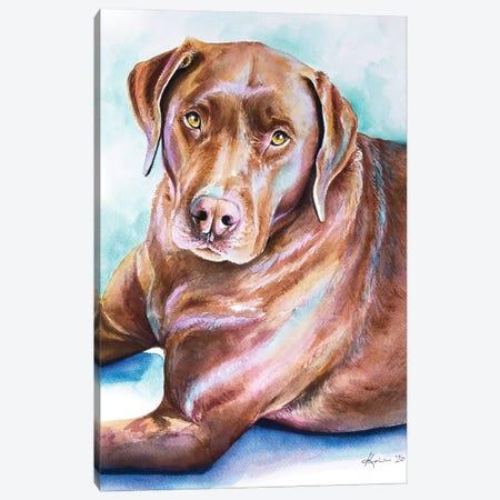 Chocolate Lab Canvas Print #LKV21} by Lindsay Kivi Art Print