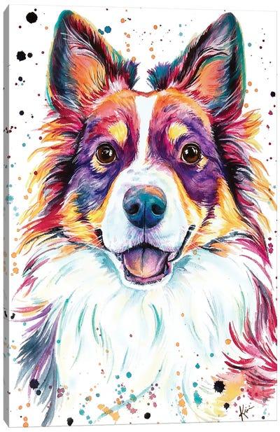 Mini Australian Shepherd Canvas Art Print