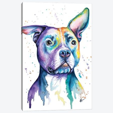 Pit Bull Canvas Print #LKV33} by Lindsay Kivi Canvas Wall Art