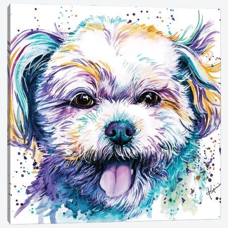 Shih Tzu Ii Canvas Print #LKV42} by Lindsay Kivi Art Print