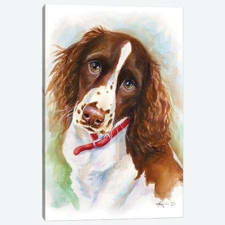 Springer Spaniel Puppy Canvas Print #LKV60} by Lindsay Kivi Art Print