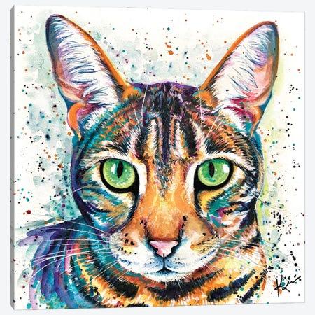 Tabby Canvas Print #LKV61} by Lindsay Kivi Art Print