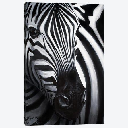Zebra Canvas Print #LKV68} by Lindsay Kivi Art Print