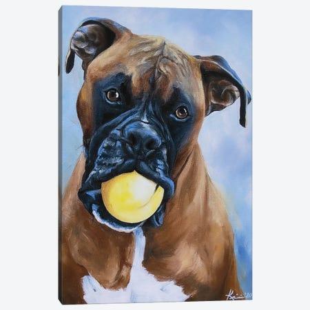 Boxer Canvas Print #LKV7} by Lindsay Kivi Canvas Artwork