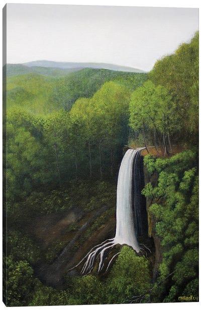 Falling Springs Canvas Art Print