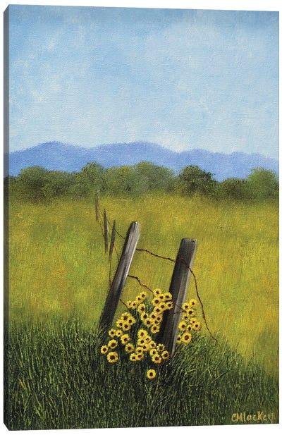 Fence Row Canvas Art Print