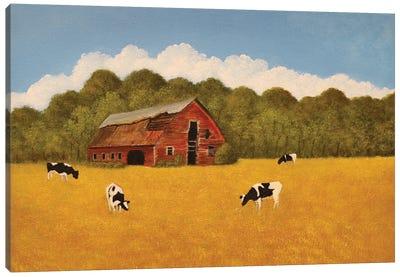 Holstein Farm Canvas Art Print