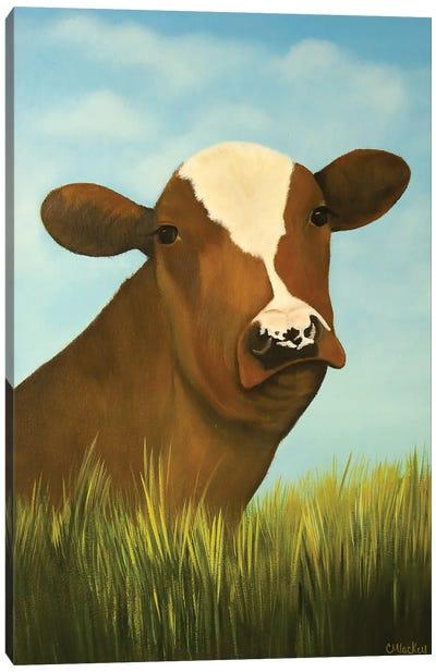 Otis Canvas Art Print