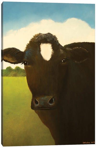 Taffy Canvas Art Print