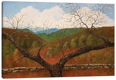 The Overlook Canvas Art Print