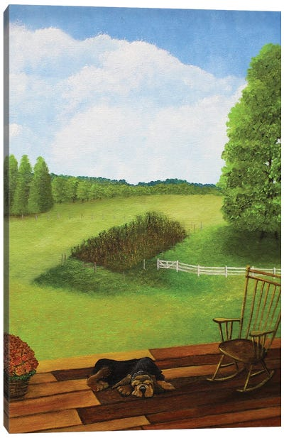 View From The Back Porch Canvas Art Print