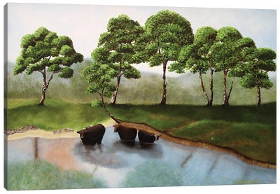 Cattle In The Creek Canvas Art Print